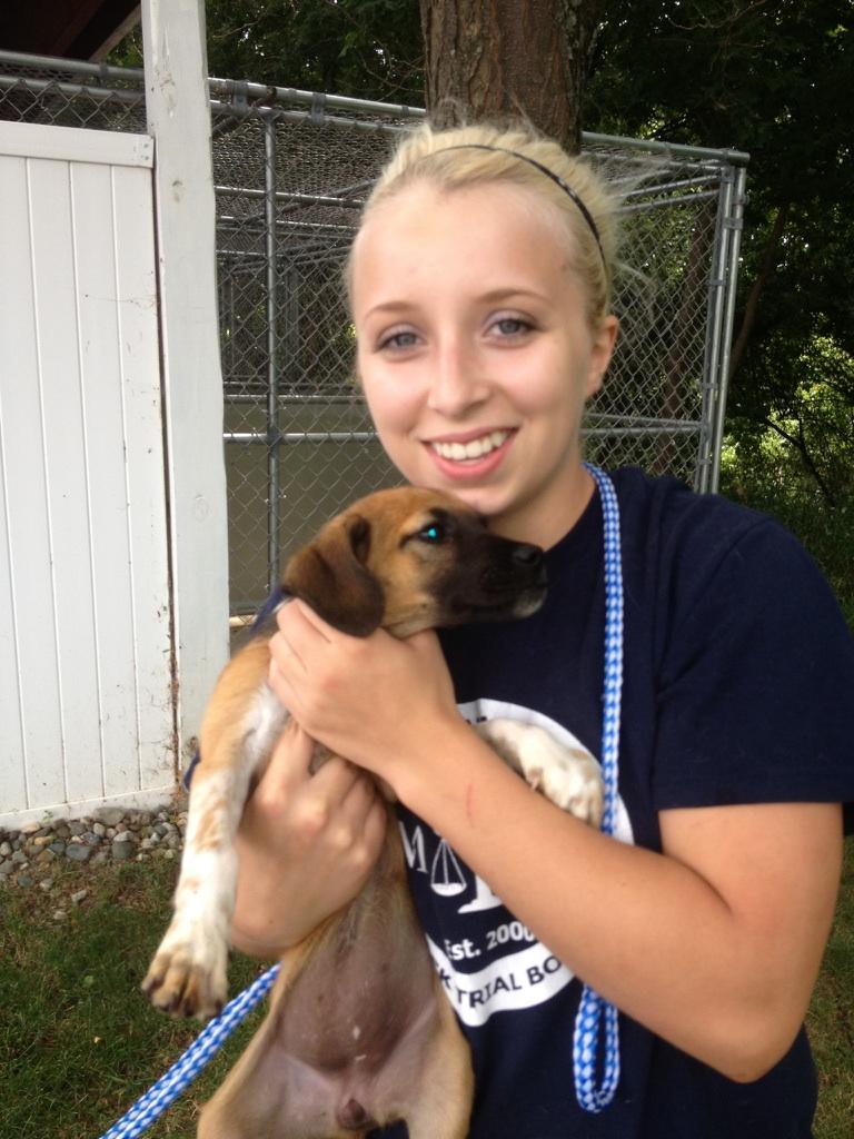 Receipt of dogs in Lansing